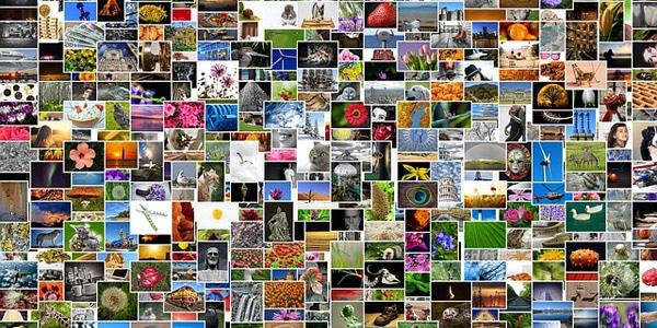Comment sélectionner les images de son site internet